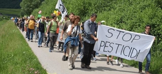 marcia stop pesticidi.jpg