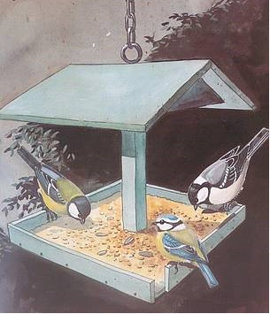 Immagine mangiatoia uccelle
